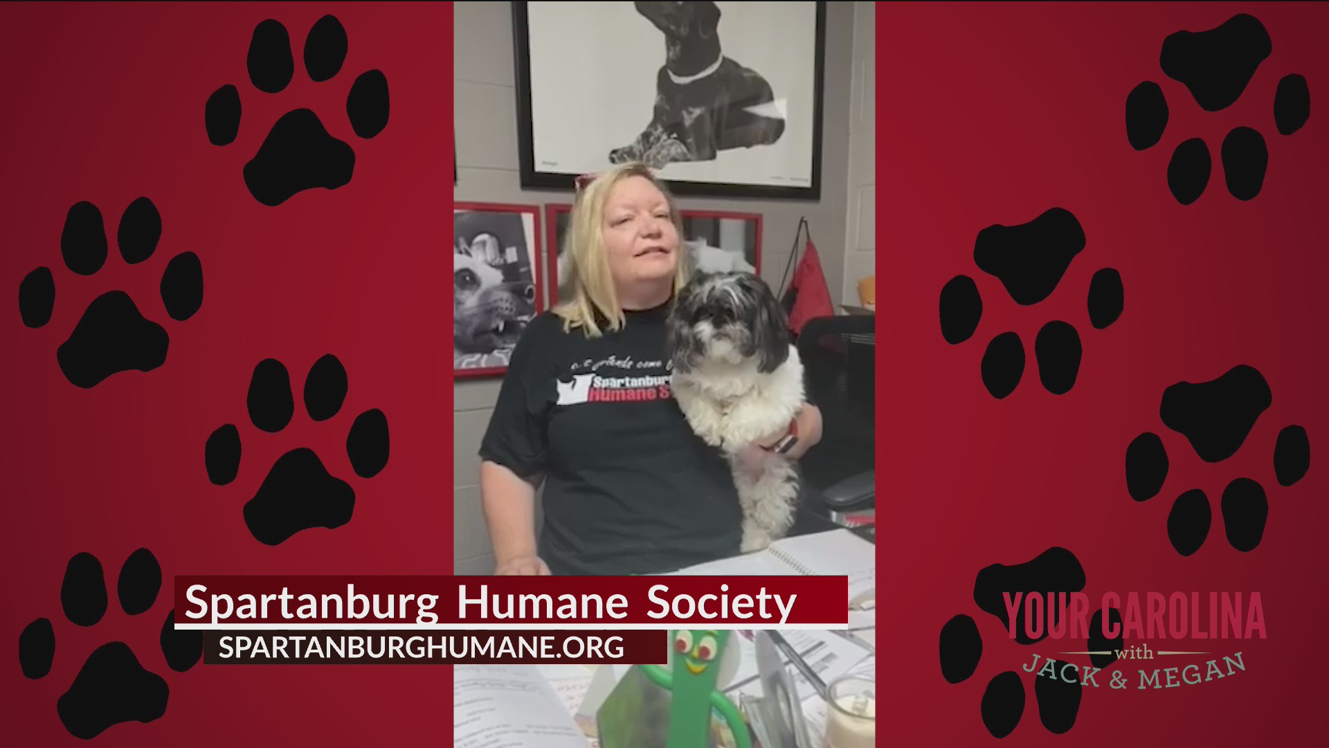 Furry Friend Friday - Checking In With Spartanburg Humane Society