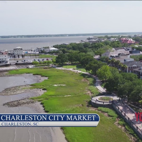 Destination Vacation - Charleston