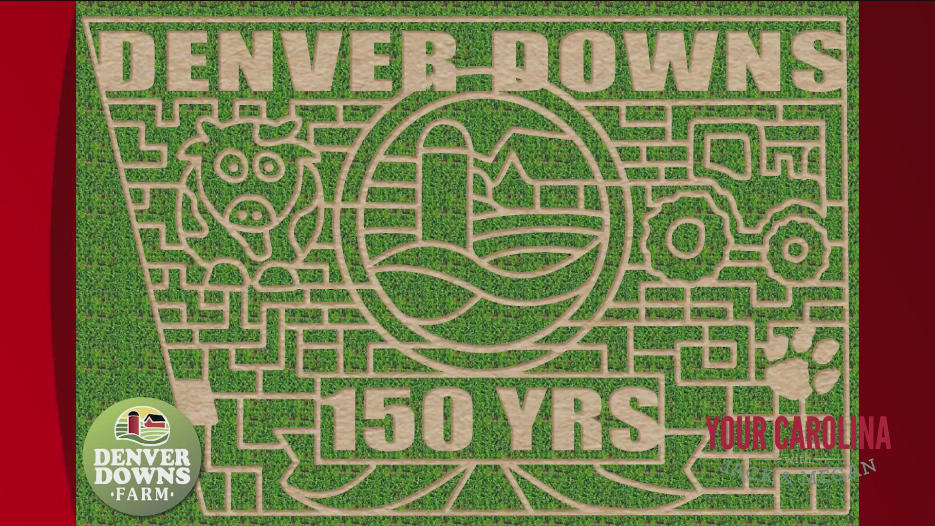 Denver Downs Christmas Parade 2020 Head Over To Denver Downs