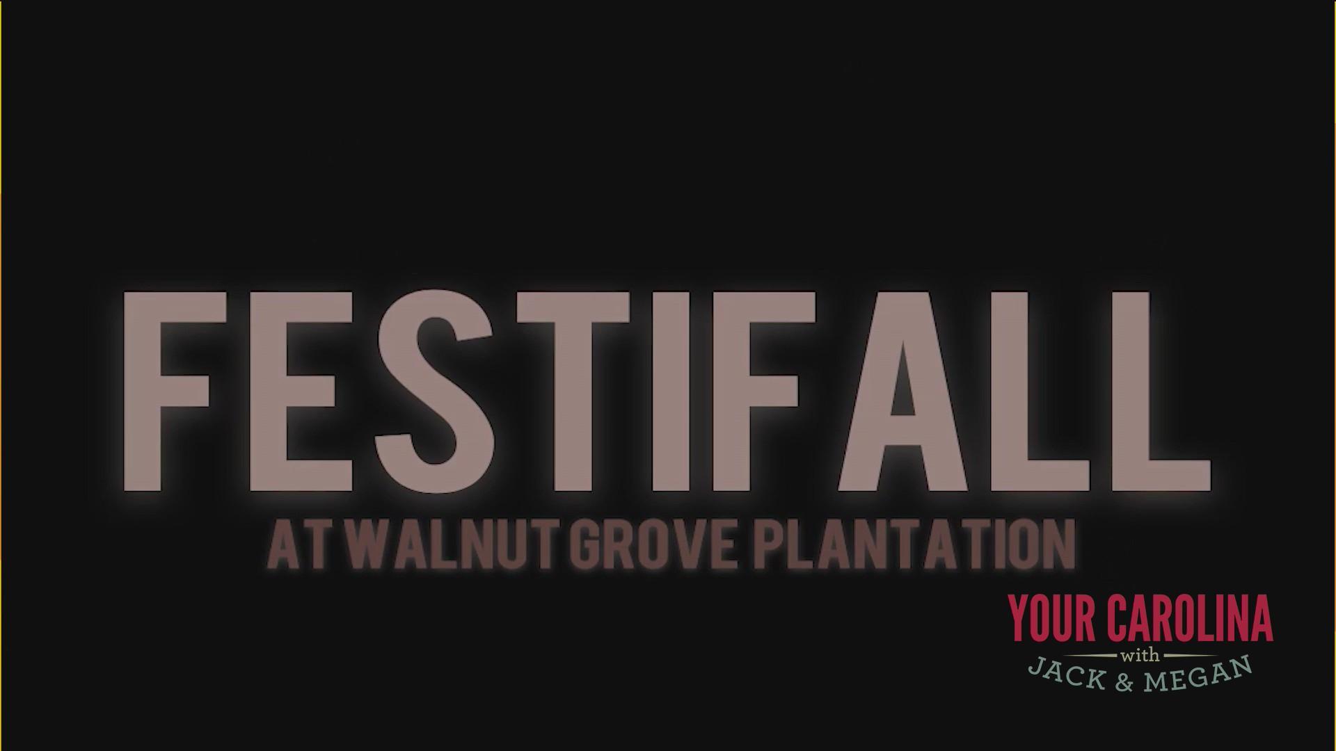 FestiFall 2020